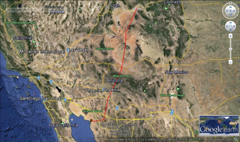 The red line shows the migration route of one of the burrowing owls we fitted with a transmitter backpack.