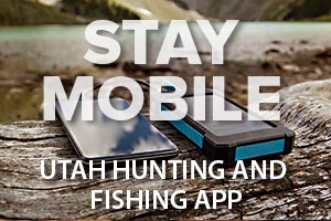 Hunter, angler app